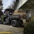 hst_my2014-ranger-sagegreen-diesel-hst-location02