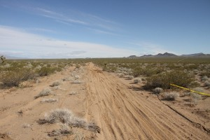Western Raceway opened up the outer desert track for the UTV's to hammer down on the gas.